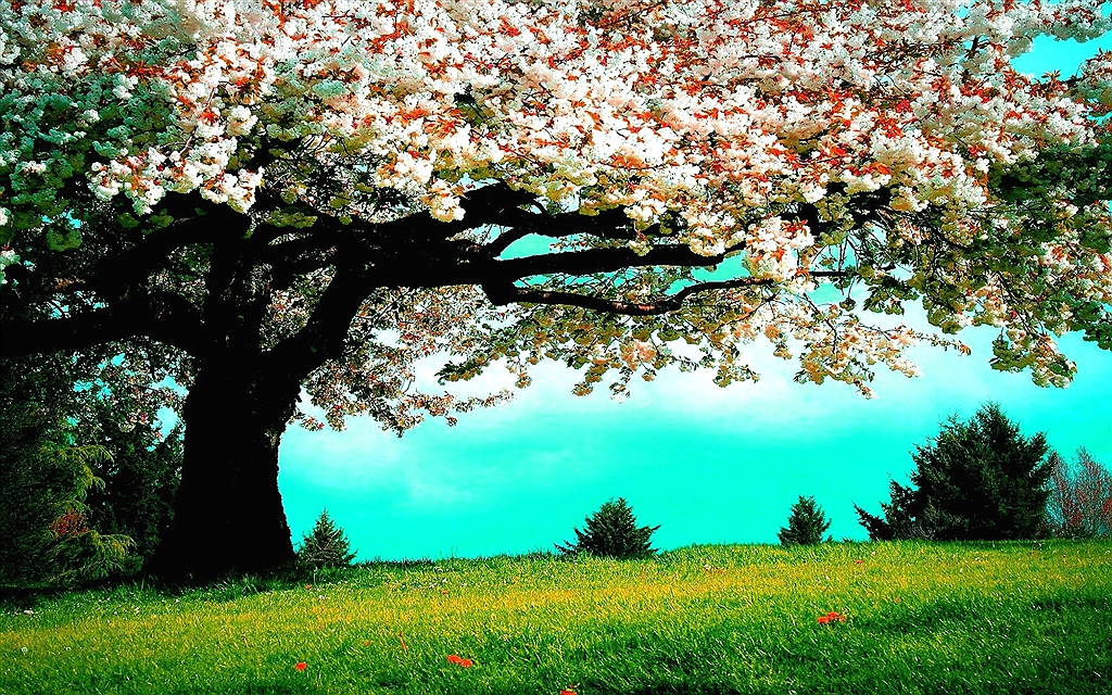 Offerte Ponti di Primavera in Umbria